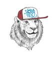 lion in cap hand drawn print design vector image vector image