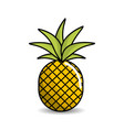 pineapple fruit icon stock vector image vector image