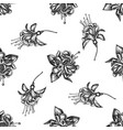 seamless pattern with black and white fuchsia vector image vector image