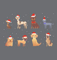 set of cute dogs in red santas hat christmas vector image