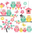 Summer Owls vector image