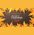 web banner template for autumn sale vector image