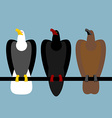 Set eagles birds of prey Quick Bald eagle with vector image