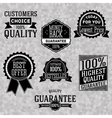 Collection of vintage business labels with popular vector image vector image