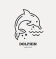 Dolphin vector image vector image