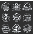 Kayaking Tours Emblem Set vector image