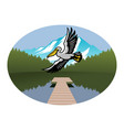 pelican bird flying over lake vector image