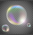 soap bubbles on a transparent background vector image