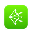 bow and arrows equipment icon green vector image vector image