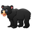 honey bear cartoon vector image vector image