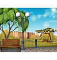 Nature scene with park and trees vector image vector image