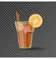 Orange drink in the glass vector image