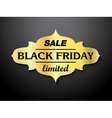 Black Friday sale card design vector image vector image