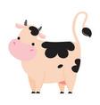 cute baby cow adorable funny farm animal cartoon