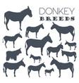 donkey breeds icon set animal farming flat design vector image vector image