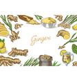 fresh figs poster or banner detox background vector image vector image