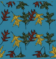 hand drawn seamless pattern with oak leaves vector image vector image
