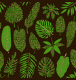 leaves tropical plants with leopard print vector image vector image