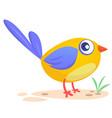 258bird vector image