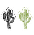 cactus silhouette grunge on old paper vector image vector image