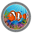 clown fish cartoon vector image vector image