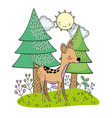 deer animal drawing vector image