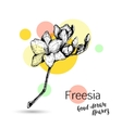 Freesia flower for wedding or birthday card vector image