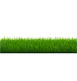 green grass white background vector image vector image