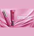 lip gloss liquid lipstick tubes top view banner vector image vector image