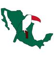 Toucan Mexico vector image vector image