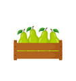 wooden box with green pear vector image