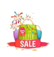 Big sale banner with color packet and ribbon vector image vector image