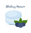 blueberry macaron with meringue cream vector image vector image