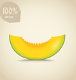 Cute fresh yellow melon vector image vector image