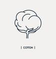 cotton icon vector image