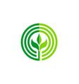 green leaf round seed organic logo vector image