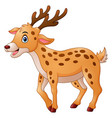 cute deer cartoon vector image vector image