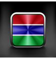 Gambia icon flag national travel icon country vector image