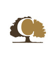 oak tree with letter c vector image