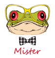 portrait a frog on a white background with glas vector image vector image
