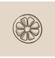 Slice of lemon sketch icon vector image