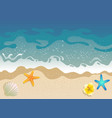 white sand beach vector image vector image