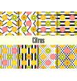 citrus seamless pattern set orange kiwi vector image