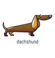 dachshund icon cartoon style vector image vector image