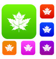 gooseberry leaf set color collection vector image vector image