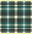green plaid fabric texture seamless pattern vector image vector image