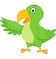 happy parrot cartoon presenting vector image vector image