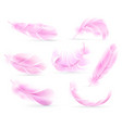 pink feathers bird or angel feather birds vector image vector image