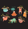 set of cute hand drawn sloths hanging on the tree vector image