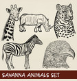 set of hand drawn detailed african animals vector image
